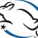 Testowanie kosmetyków i innych produktów na zwierzętach.