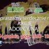 Zapraszamy na akcję adopcyjną!