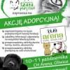 Zapraszamy na kolejną akcję adopcyjną!