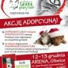Zapraszamy na kolejną akcję adopcyjną.