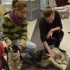 Kolejna akcja adopcyjna w Arenie za nami!!!