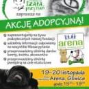 Akcja adopcyjna! 19-20 listopada C.H. Arena