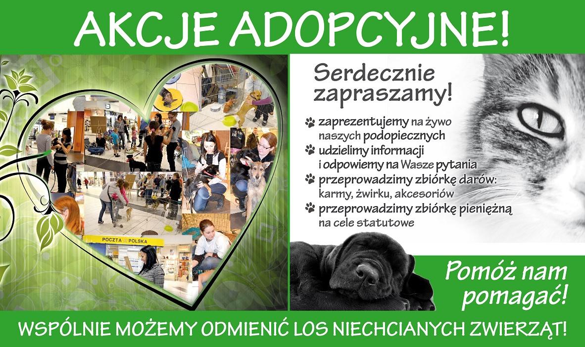 akcje-adopcyjne_www